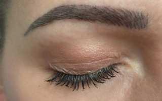 Особенности перманентного макияжа бровей с теневой растушевкой