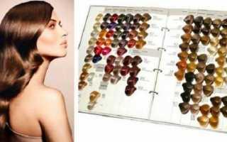 Палитра оттенков краски для волос kapous