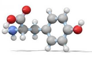 Аминокислоты для похудения: для чего нужны женщинам и мужчинам после 40 лет, как пить для сжигания жира, отзывы и результаты похудевших