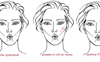 Учимся, как правильно наносить румяна на лицо пошагово
