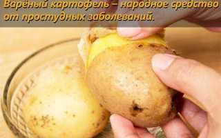 Сколько белков, жиров и углеводов в картофеле?